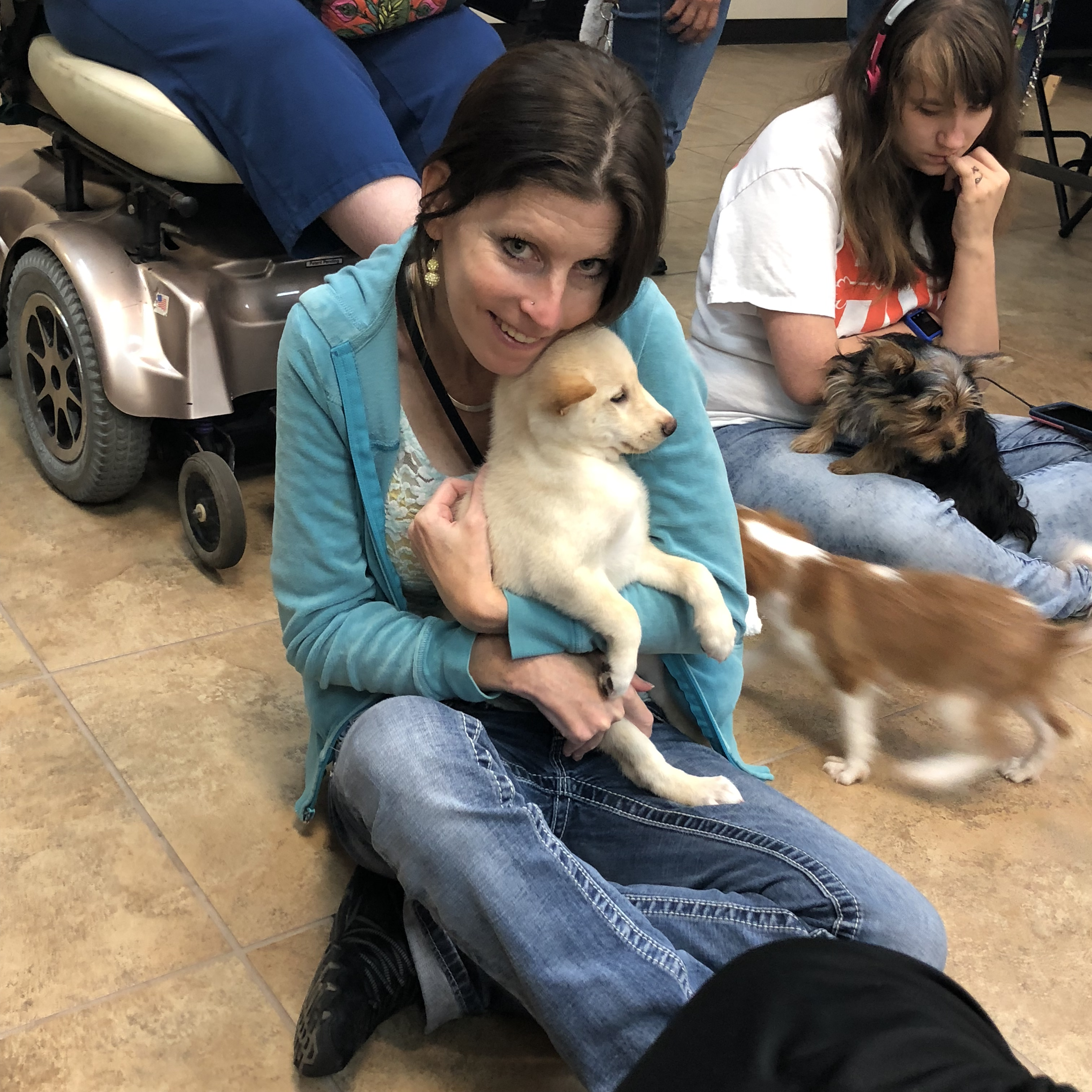 Puppy Therapy at DAC…Caution!  Your Heart Will Melt!!